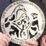 Remise Trophées Races Régionales 2018 & 2019